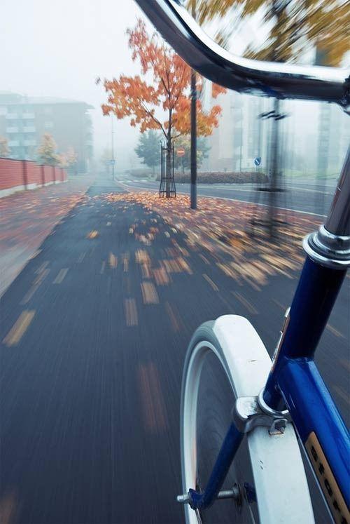 Imagem de Bicicleta em Velocidade