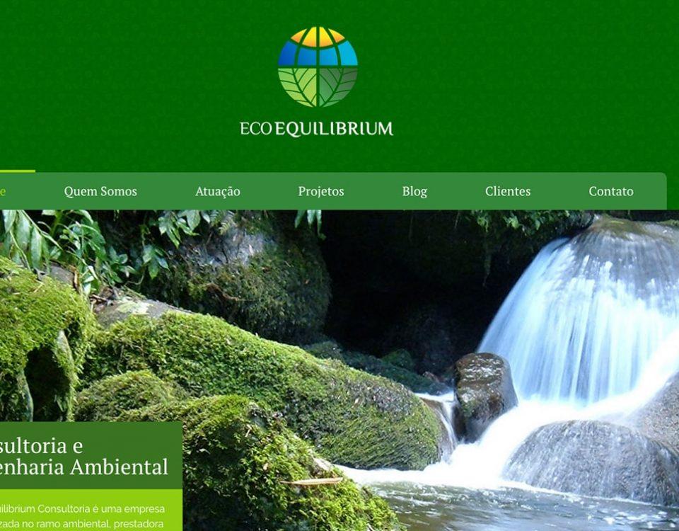 Web Site Ecoequilibrium